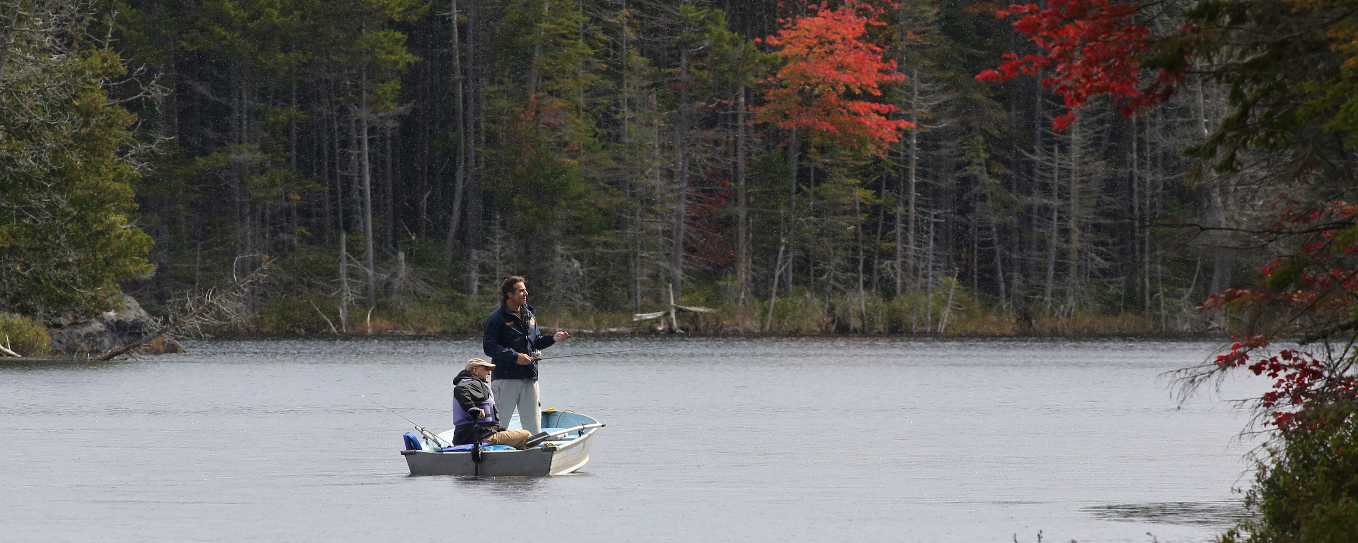 governor cuomo announces new york trout and salmon fishing